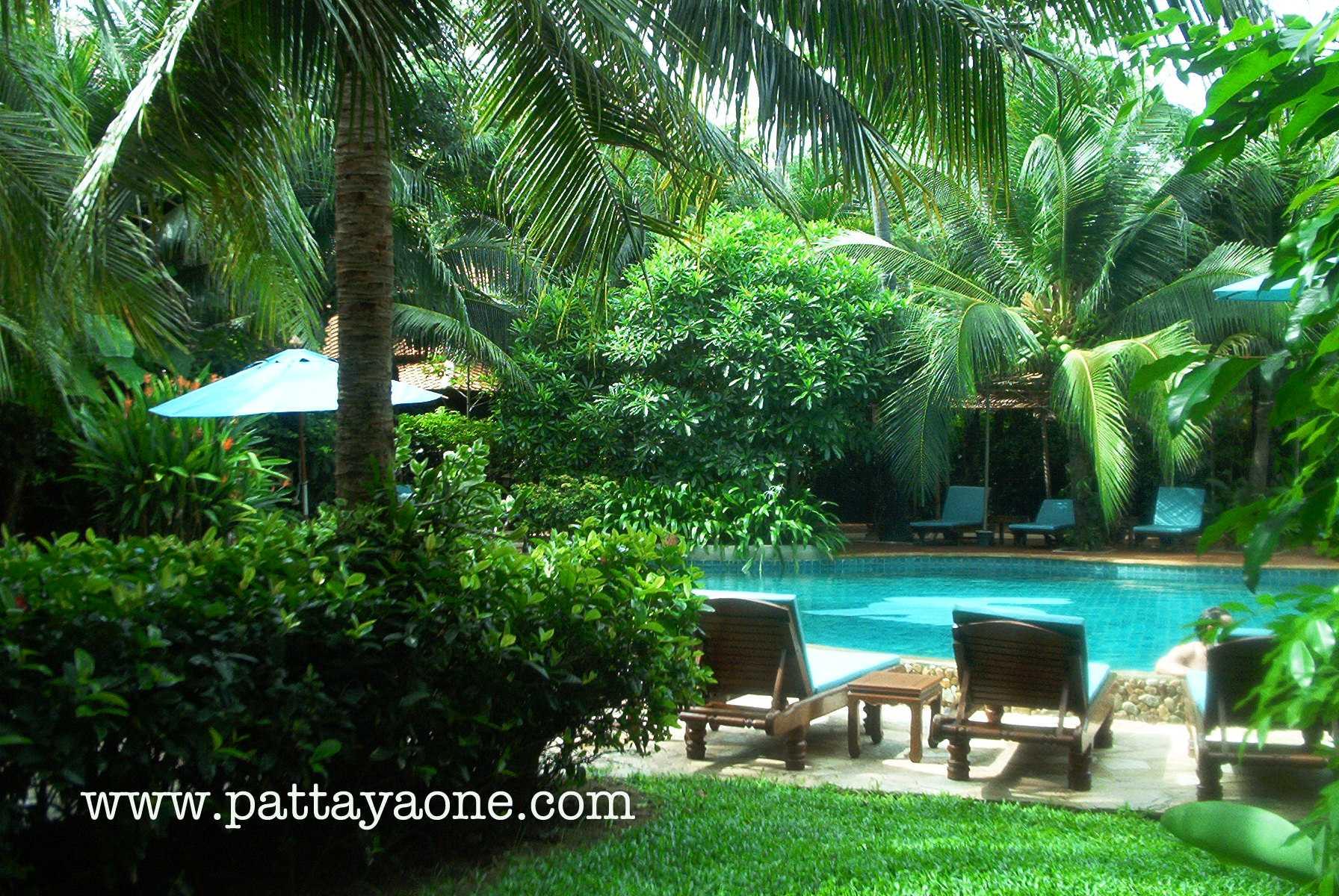 Rabbit Resort Www Pattayaone Com